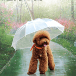Yup! This is actually an umbrella for your dog.